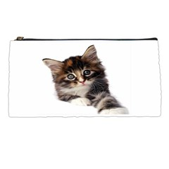 Curious Kitty Pencil Case