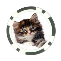 Curious Kitty Poker Chip 10 Pack
