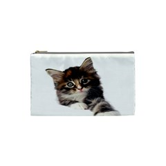 Curious Kitty Cosmetic Bag (Small)