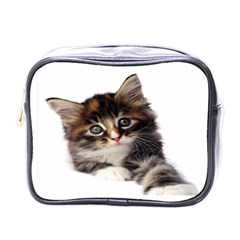 Curious Kitty Mini Travel Toiletry Bag (one Side)