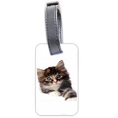 Curious Kitty Luggage Tag (One Side)