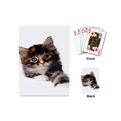 Curious Kitty Playing Cards (Mini)