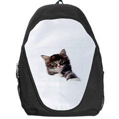 Curious Kitty Backpack Bag