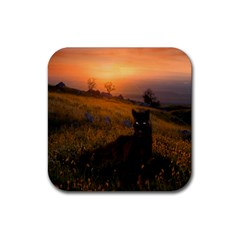 Evening Rest Drink Coasters 4 Pack (Square)