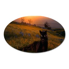 Evening Rest Magnet (oval)
