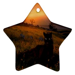 Evening Rest Star Ornament (two Sides)