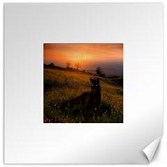 Evening Rest Canvas 12  x 12  (Unframed)