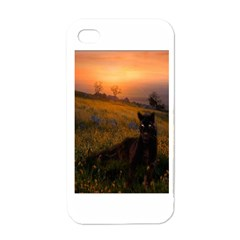 Evening Rest Apple iPhone 4 Case (White)