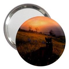 Evening Rest 3  Handbag Mirror