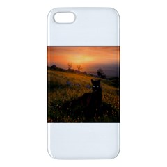 Evening Rest iPhone 5 Premium Hardshell Case