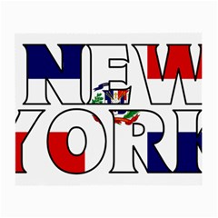 New York Dr Glasses Cloth (Small)