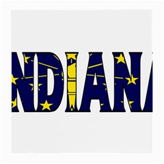 Indiana Glasses Cloth (Medium)