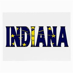 Indiana Glasses Cloth (large)