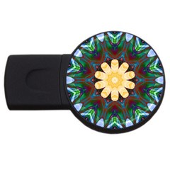 Smoke art  (9) 4GB USB Flash Drive (Round)