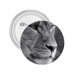 Lion 1 2.25  Button
