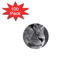 Lion 1 1  Mini Button (100 pack)