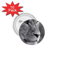 Lion 1 1 75  Button (10 Pack)