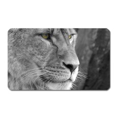 Lion 1 Magnet (Rectangular)