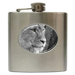Lion 1 Hip Flask