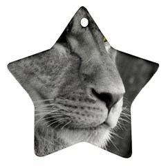 Lion 1 Star Ornament (Two Sides)