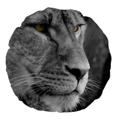 Lion 1 18  Premium Round Cushion