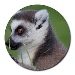 Ring Tailed Lemur  2 8  Mouse Pad (Round)