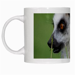 Ring Tailed Lemur  2 White Coffee Mug