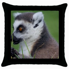 Ring Tailed Lemur  2 Black Throw Pillow Case