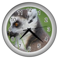 Ring Tailed Lemur  2 Wall Clock (Silver)