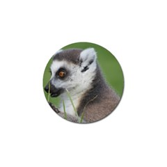Ring Tailed Lemur  2 Golf Ball Marker 4 Pack