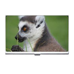 Ring Tailed Lemur  2 Business Card Holder