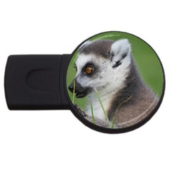 Ring Tailed Lemur  2 1GB USB Flash Drive (Round)