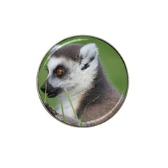 Ring Tailed Lemur  2 Golf Ball Marker 4 Pack (for Hat Clip)