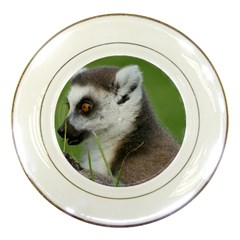 Ring Tailed Lemur  2 Porcelain Display Plate