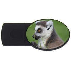 Ring Tailed Lemur  2 4GB USB Flash Drive (Oval)