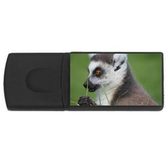 Ring Tailed Lemur  2 4GB USB Flash Drive (Rectangle)