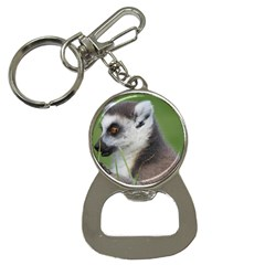 Ring Tailed Lemur  2 Bottle Opener Key Chain