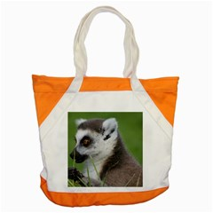 Ring Tailed Lemur  2 Accent Tote Bag