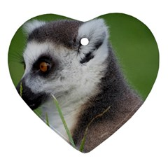 Ring Tailed Lemur  2 Heart Ornament (Two Sides)
