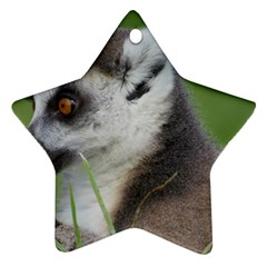 Ring Tailed Lemur  2 Star Ornament (Two Sides)