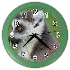 Ring Tailed Lemur  2 Wall Clock (Color)