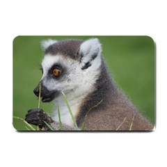 Ring Tailed Lemur  2 Small Door Mat