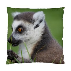 Ring Tailed Lemur  2 Cushion Case (two Sides)