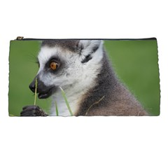 Ring Tailed Lemur  2 Pencil Case