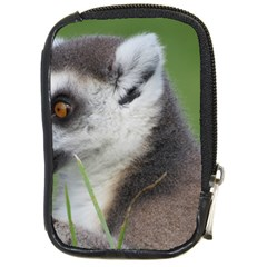 Ring Tailed Lemur  2 Compact Camera Leather Case