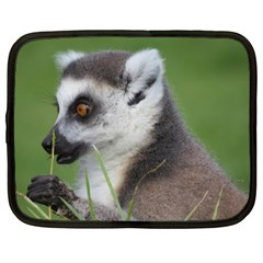 Ring Tailed Lemur  2 Netbook Case (xxl)