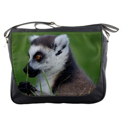 Ring Tailed Lemur  2 Messenger Bag