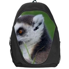 Ring Tailed Lemur  2 Backpack Bag
