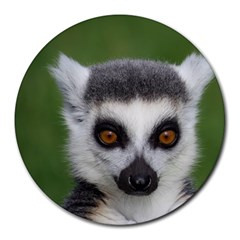 Ring Tailed Lemur 8  Mouse Pad (Round)