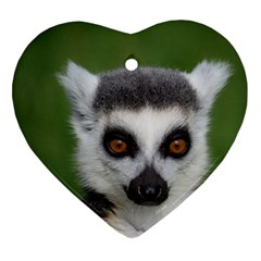 Ring Tailed Lemur Heart Ornament